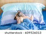 Pug Dog Having A Siesta An...