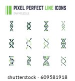 set of 12 line style dna... | Shutterstock .eps vector #609581918