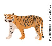 isolated tiger on a white... | Shutterstock .eps vector #609626420