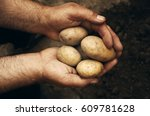 hands holding fresh potatoes... | Shutterstock . vector #609781628