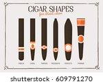 different cigar shapes   Shutterstock .eps vector #609791270