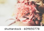 rose vintage background