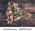 beautiful colorful dried... | Shutterstock . vector #609921314