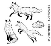 hand drawn cute foxes | Shutterstock .eps vector #609964358