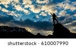 lifestyle   determine target | Shutterstock . vector #610007990
