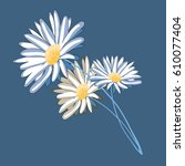 three daisies. vector... | Shutterstock .eps vector #610077404