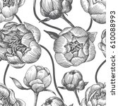 peony flowers bud pattern | Shutterstock .eps vector #610088993