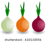 set fresh vegetable onion... | Shutterstock . vector #610110056