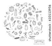 hand drawn doodle seasonal... | Shutterstock .eps vector #610113956