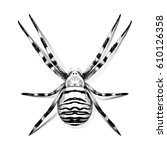 spider symmetric top view with... | Shutterstock .eps vector #610126358