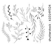 branches and leaves  doodle... | Shutterstock .eps vector #610149524
