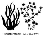 Sea Weed Black Silhouettes ...