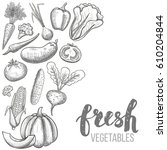 monochrome sketch style set of... | Shutterstock .eps vector #610204844