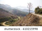 bombax ceiba tree with red... | Shutterstock . vector #610215998