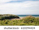 seagulls and sand dunes on the...