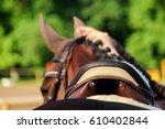 close up of horse saddle on the ...