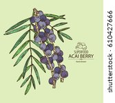 background with acai berries... | Shutterstock .eps vector #610427666