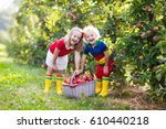 child picking apples on a farm... | Shutterstock . vector #610440218