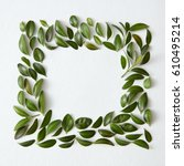 blank space arranged with green ... | Shutterstock . vector #610495214