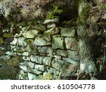 Small photo of Background of old middle ages stone wall accursed roots and tree trunks