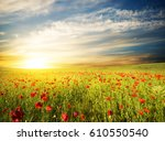 field with green grass and red... | Shutterstock . vector #610550540