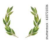 watercolor bay leaf wreath... | Shutterstock . vector #610721036