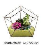 succulents in glass bitter ... | Shutterstock . vector #610722254