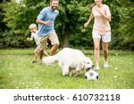 family plays soccer with dog... | Shutterstock . vector #610732118
