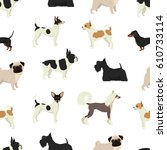 Dog Collection Seamless Patter...