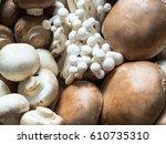Various Raw Mushroom Types   ...