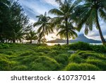 new from motu piti a'au over...   Shutterstock . vector #610737014