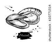 mussel hand drawn vector... | Shutterstock .eps vector #610771514