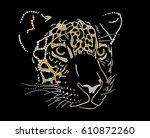 muzzle of a jaguar | Shutterstock .eps vector #610872260