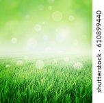 fresh field of green grass... | Shutterstock . vector #610899440