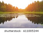 the lake in the summer forest | Shutterstock . vector #611005244