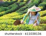 woman in green shirt collect... | Shutterstock . vector #611038136