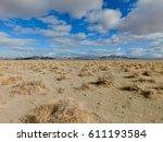 Nevada Desert Beauty