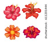 tropical flowers decorative card | Shutterstock .eps vector #611201444