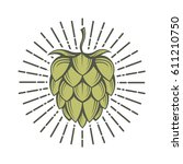 illustration of hops for brewing | Shutterstock .eps vector #611210750