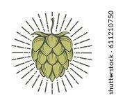 illustration of hops for brewing | Shutterstock .eps vector #611210750