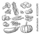 set vegetables. cucumbers ... | Shutterstock .eps vector #611222690