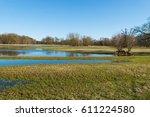 wetlands swamp area   Shutterstock . vector #611224580