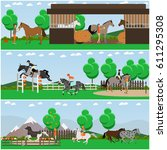 vector set of horse riding... | Shutterstock .eps vector #611295308