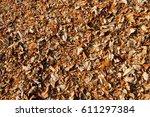 dry leave | Shutterstock . vector #611297384