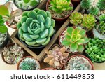 Top View Of Various Types Of...