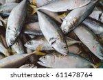 Fresh Mackerel Fish At The...