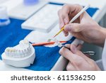 dentists in his laboratory   Shutterstock . vector #611536250