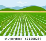 vector rice field and mountain... | Shutterstock .eps vector #611608259