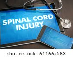 spinal cord injury ... | Shutterstock . vector #611665583
