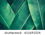 Green Tropical Leaves Texture...